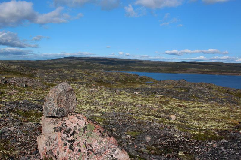 tundra36.jpg